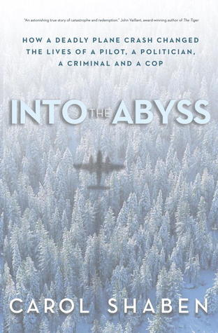 Into the Abyss: How a Deadly Plane Crash Changed the Lives of a Pilot, a Politician, a Criminal and a Cop