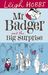 Mr Badger and the Big Suprise (Mr Badger, #1)