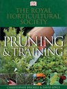 Rhs Pruning And Training
