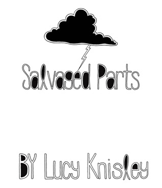Salvaged Parts by Lucy Knisley