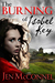 The Burning Of Isobel Key (Kindle Edition)