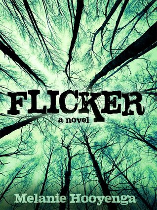 Flicker by Melanie Hooyenga
