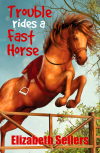 Free Download Trouble Rides a Fast Horse by Elizabeth Sellers RTF