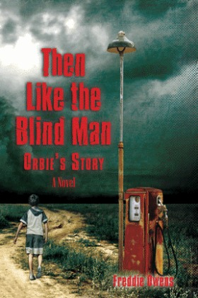 Download for free Then Like the Blind Man: Orbie's Story by Freddie Owens PDF