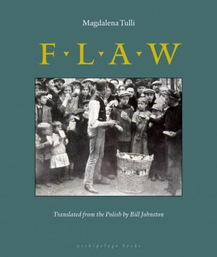 Flaw by Magdalena Tulli