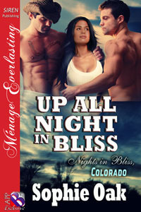 Up All Night in Bliss (Nights in Bliss, Colorado #6.5)