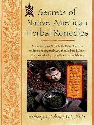 Secrets of Native American Herbal Remedies: Comph GT Native Amern Tradition Using Herbs Mind/Body/Spirit Connection for Ipvg