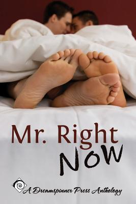 Mr. Right Now  by  Rhianne Aile