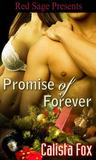 Promise of Forever by Calista Fox