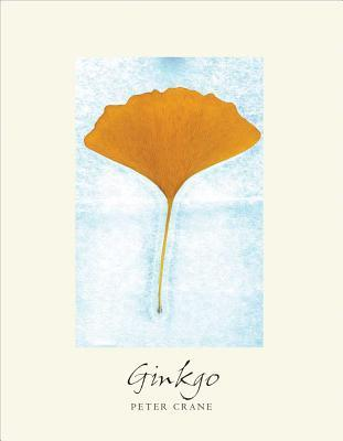 Ginkgo by Peter Crane
