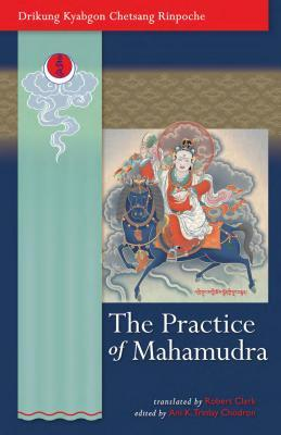 The Practice of Mahamudra