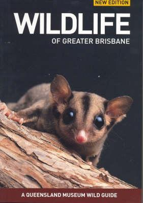 Wildlife Of Greater Brisbane