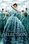 Selection (The Selection, #1)