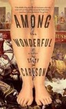 Among the Wonderful: A Novel