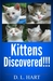 Kittens Discovered!!!