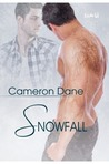 Snowfall (Foster Siblings, #2.5)