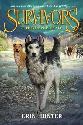 A Hidden Enemy (Survivors, #2)