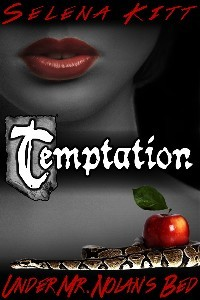 Temptation (Under Mr. Nolan's Bed, #1)