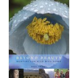 Beyond Beauty: Hunting the Wild Blue Poppy