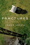 Fractures: A Novel