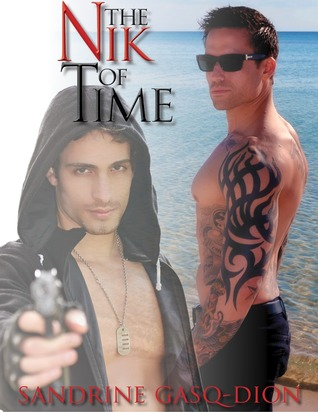 The Nik of Time (Assassin/Shifter #17)