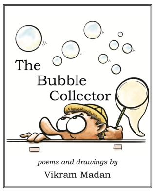The Bubble Collector by Vikram Madan