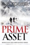 Prime Asset (Corps Justice, #3)