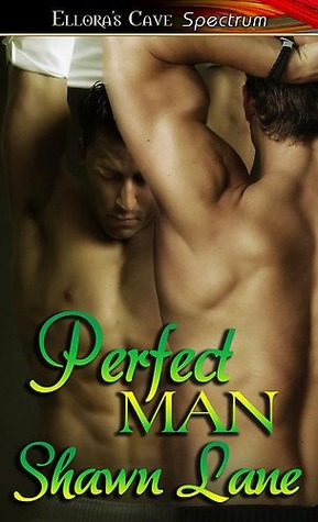 Perfect Man by Shawn Lane