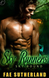 Sky Runners (Skybound, #2)