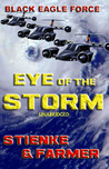 Eye of the Storm by Buck Stienke