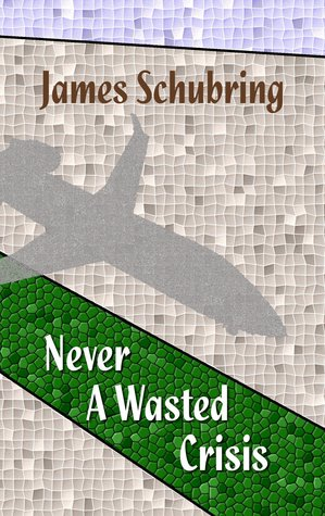 Never A Wasted Crisis by James  Schubring
