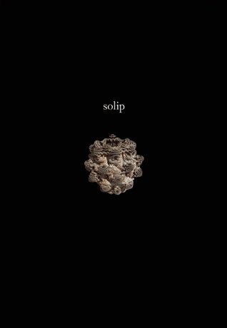 Solip by Ken Baumann
