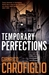 Temporary Perfections (ebook)