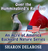 Over the Hummingbird's Rainbow by Sharon Delarose