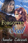 Forgotten Soul (Soul Searchers, #1)