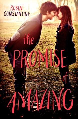 The Promise of Amazing - Robin Constantine epub download and pdf download