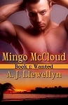 Wanted (Mingo McCloud, #1)