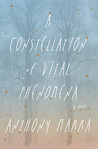 A Constellation of Vital Phenomena by Anthony Marra