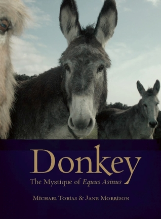 Donkey by Michael Tobias