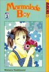 Marmalade Boy, Vol. 03