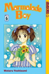 Marmalade Boy, Vol. 06