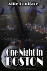 One Night in Boston (One Night, #1)