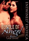Bundle of Angel by Gia Blue