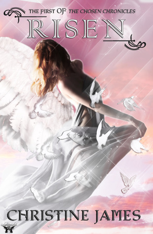The Chosen Chronicles by Christine James