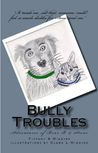 Bully Troubles (Adventures of Bear B & Stone, #1)
