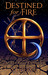 Destined for Fire (Alyx Rayer Chronicles, #3)