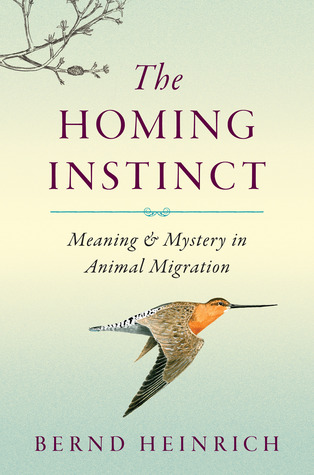 The Homing Instinct: Meaning and Mystery in Animal Migration