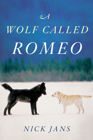 Find A Wolf Called Romeo PDF