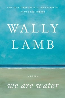 Review We Are Water: A Novel by Wally Lamb PDB