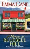 A Promise at Bluebell Hill (Valentine Valley, #4)